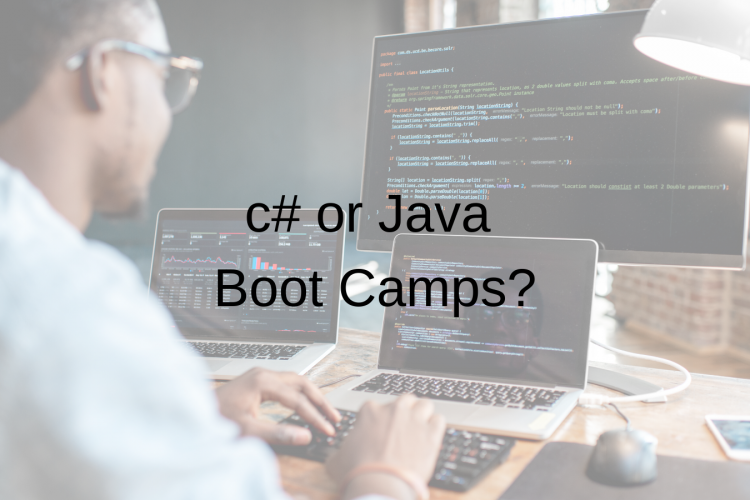 c# or Java Boot Camps?