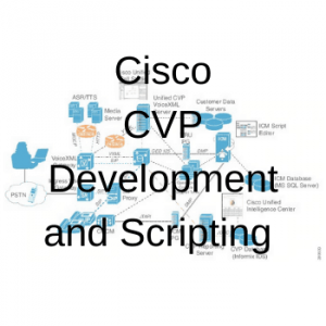 CVP Development and Scripting Part 1
